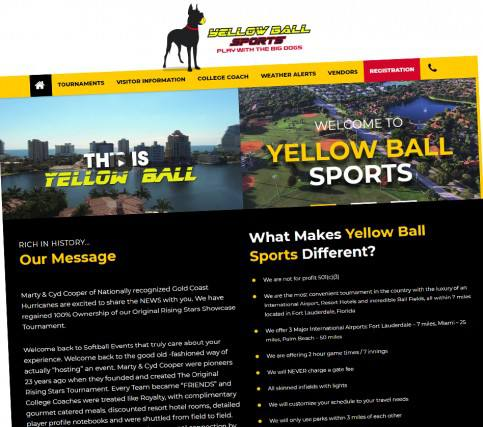 Yellow Ball Sports